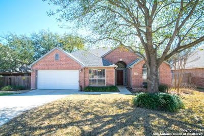 San Antonio Single Family Home New: 3330 Mineral Creek