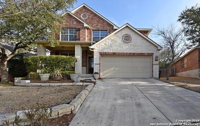 San Antonio Single Family Home New: 2815 Silverton Ct