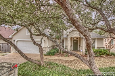 San Antonio Single Family Home New: 1441 Canyon Brook
