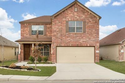 San Antonio Single Family Home New: 10323 Fort Davis Trail