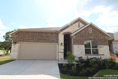 San Antonio Single Family Home New: 10610 Far Reaches Lane