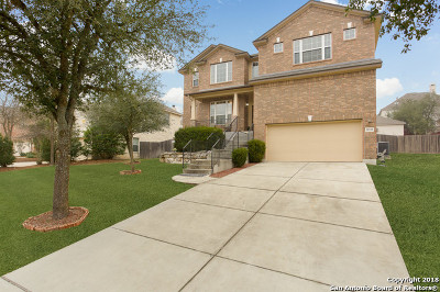 San Antonio Single Family Home New: 21522 Promontory Cir