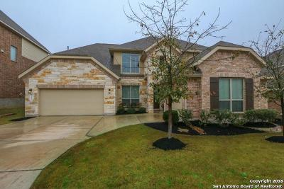 San Antonio Single Family Home New: 714 Aucuba Bend