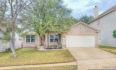 San Antonio Single Family Home New: 11114 Wilson Oaks