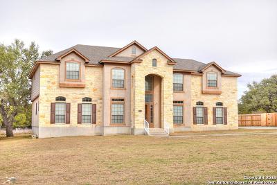 San Antonio Single Family Home New: 28018 George Obrien