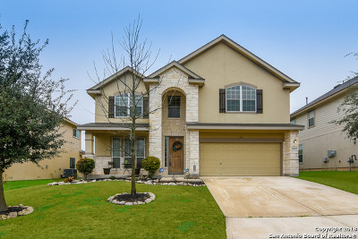 San Antonio Single Family Home New: 25819 Big Bluestem