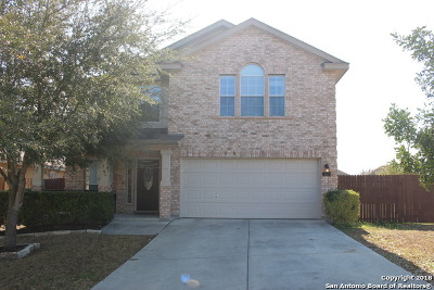 New Braunfels Single Family Home New: 517 San Jacinto Dr