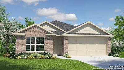 San Antonio Single Family Home New: 15506 Cooks Petrel