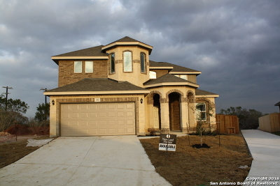 San Antonio TX Single Family Home New: $309,500