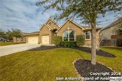 Seguin Single Family Home For Sale: 3035 Hidden Meadows