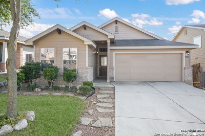 Leon Valley Single Family Home New: 5533 Saffron Way