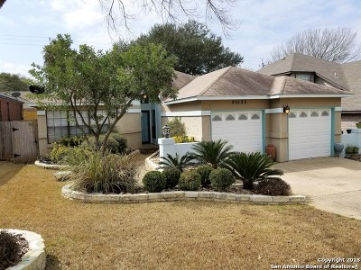San Antonio Single Family Home New: 25122 Summit Creek