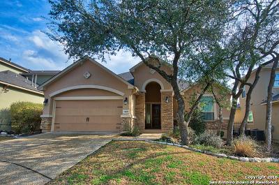 San Antonio Single Family Home New: 24018 Stately Oaks