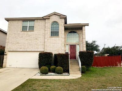 San Antonio Single Family Home New: 2823 Encino Riv