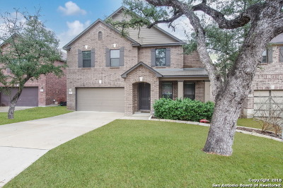 San Antonio Single Family Home New: 20710 Creek Riv