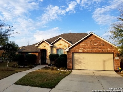 San Antonio Single Family Home New: 25814 Santolina