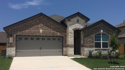 Single Family Home For Sale: 3007 Shale Cv