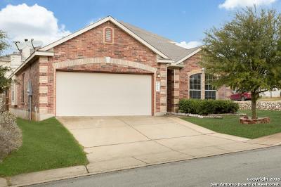 San Antonio Single Family Home New: 3615 Bramble Pass
