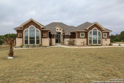 New Braunfels Single Family Home New: 2342 Haven Bluff Ct