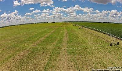 Farm & Ranch For Sale: Fm 471