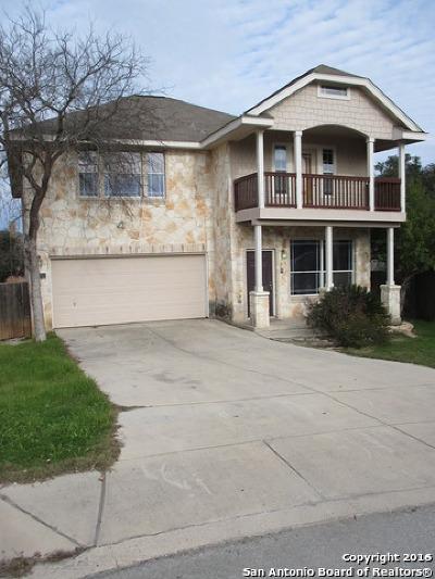 San Antonio Single Family Home New: 13743 Tramonto Hill