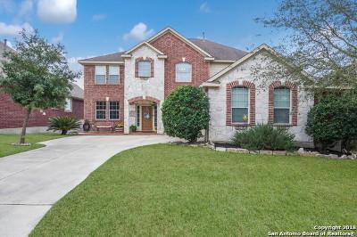 San Antonio Single Family Home New: 25127 Manhattan Way
