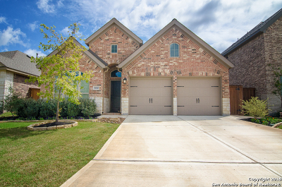 San Antonio Single Family Home New: 8610 Lajitas Bend