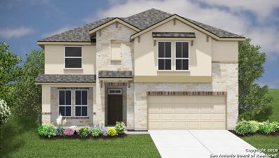 New Braunfels Single Family Home New: 2060 Flintshire Dr