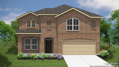 New Braunfels Single Family Home New: 1371 Fall Cover