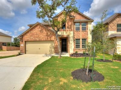 San Antonio TX Single Family Home Back on Market: $335,130
