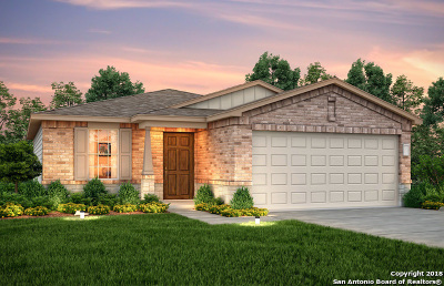 Helotes Single Family Home New: 11822 Silver Arbor