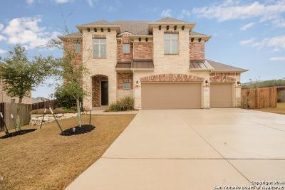 San Antonio Single Family Home New: 24523 Chianti Way