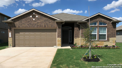 New Braunfels Single Family Home New: 1375 Fall Cover