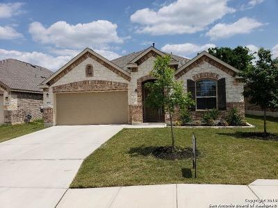 San Antonio Single Family Home New: 14514 Bucking Trail