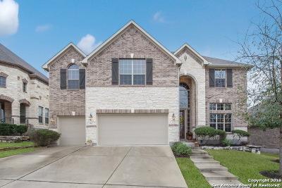 San Antonio Single Family Home New: 3967 Firebush
