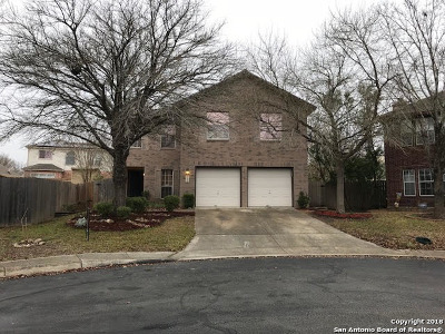 San Antonio Single Family Home New: 15302 Spring Dew