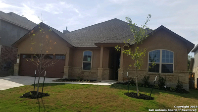 New Braunfels Single Family Home New: 224 Bamberger Ave