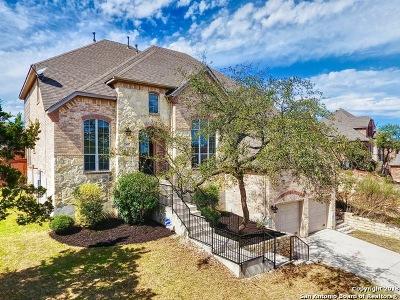 San Antonio Single Family Home New: 25607 Coronado Bluff