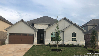 New Braunfels Single Family Home New: 232 Bamberger Ave