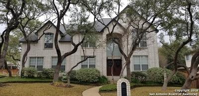 Bexar County Single Family Home New: 4126 Buffalo Bayou Rd
