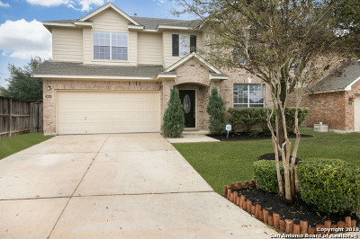 Bexar County Single Family Home New: 24550 Buck Creek