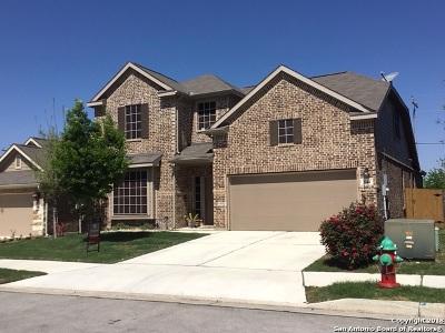 Cibolo Single Family Home New: 544 Saddlehorn Way