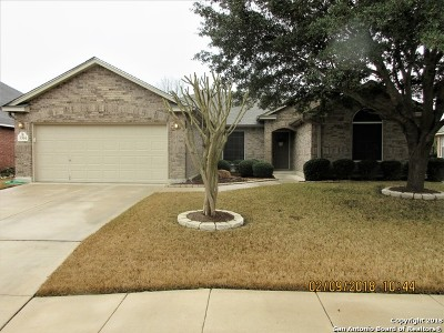 Helotes Single Family Home New: 9304 Trailing Fern