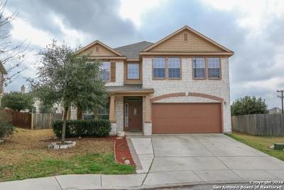 Bexar County Single Family Home New: 3606 Bramble Pass