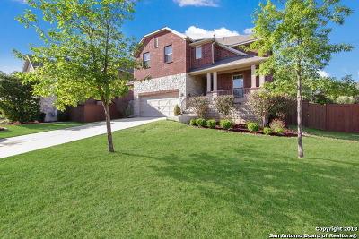 San Antonio Single Family Home New: 3715 Sunset Heights