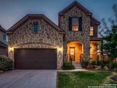 San Antonio Single Family Home New: 11907 Bailey Hills