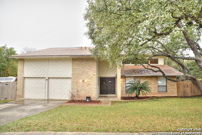 San Antonio Single Family Home For Sale: 3238 Stonehaven Dr