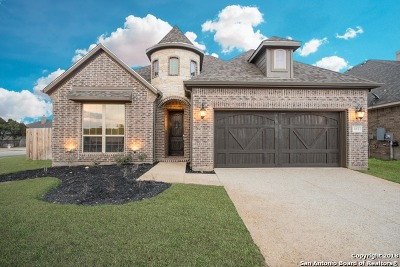 New Braunfels Single Family Home New: 663 Mission Hill Run