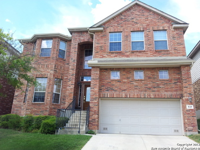 San Antonio TX Single Family Home New: $277,000