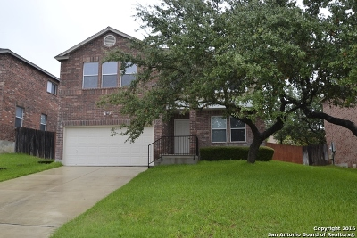 San Antonio TX Single Family Home New: $239,500